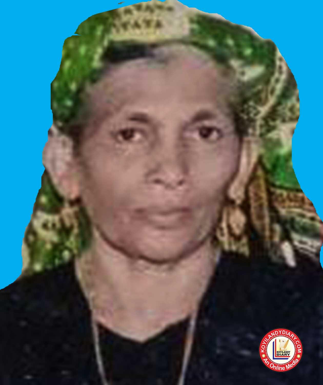 കൊയിലാണ്ടി ബീച്ച് റോഡ് തായിഫ് മൻസിൽ (ഷെയന്റവിടെ) മറിയം (78)
