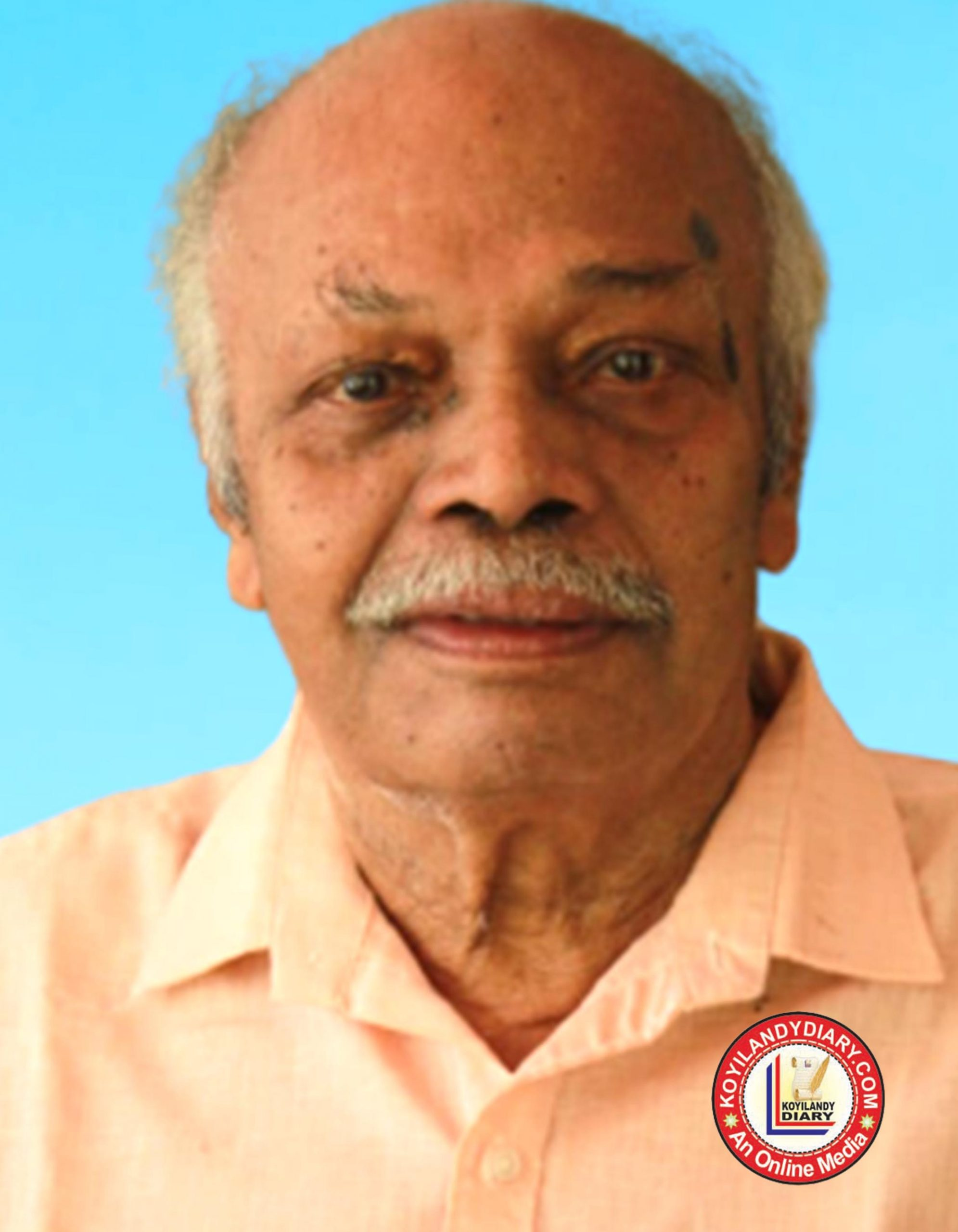 കൊല്ലം വാഴവളപ്പിൽ ഷൈജാലയം രാമകൃഷ്ണൻ (84)